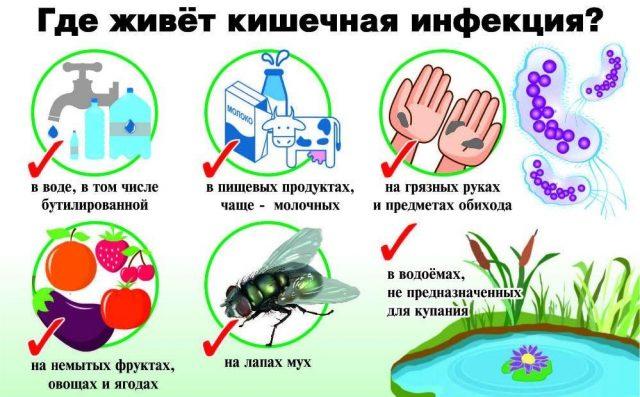 кишечная инфекция